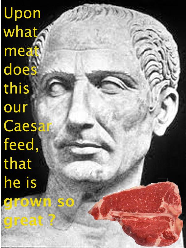 julius caesar quotesabout power
