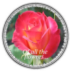 rose inscribed into a medieval circle