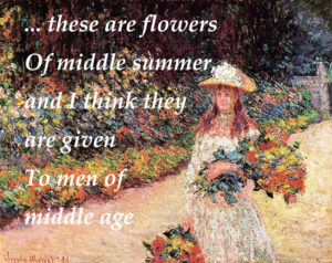 these are flowers of middle summer and I think they are given to men of middle age